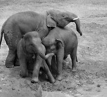 Group hug in B&W by Kyra  Webb