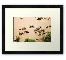 Elephants at a waterhole Framed Print