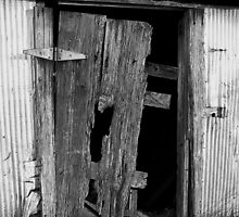 Garden Shed Door by g richard anderson