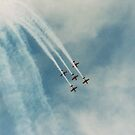 Roulettes up and over by Guyzimij
