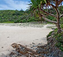 Pandanus Beach by jasondaley