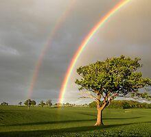 Wandon End Rainbow 1 by Geoff Spivey