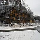 December Snow by Richard Williams
