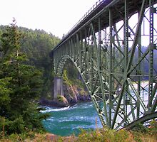 Deception Pass by Debbie Roelle