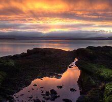 Golden dawn by Ranald