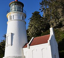 Heceta Head Light House Oregon Coast by Marylamb