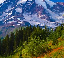 Mount Rainier and wildflower meadow by RavenFalls