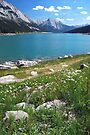 Medicine Lake 2 - Jasper by Barbara Burkhardt