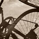 The Bicycle by Kalena Chappell