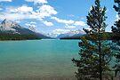 Maligne Lake - Jasper National Park by Barbara Burkhardt