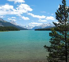 Maligne Lake - Jasper National Park by Barbara Burkhardt