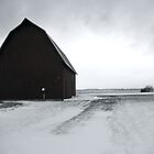 Bleak Winter Barn by Trifle