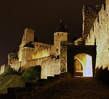 Carcassone Castle France by Daniel Mc Adam
