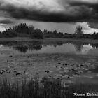 Stormy Lake by Kasper