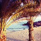 paradise life by faithie