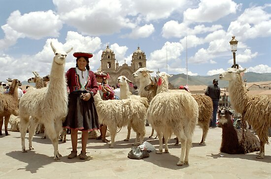 Llamas and Farmers by ardwork