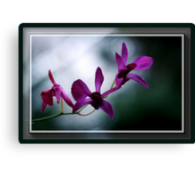 The Flower Speaks Volumes in It's Silence Canvas Print