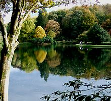Stourhead Lake by Sandra Mangnall