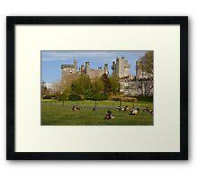 Dromoland Castle Duck walk! Framed Print