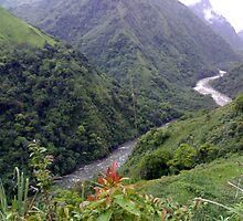 Siang River ~ Arunachal Pradesh ~ India by Arun Dasgupta