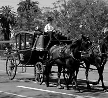 Horse & Carriage by Charlotte Pridding