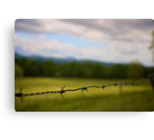 Barb Wire Canvas Print