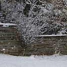 A Stacked Fence in an April Snow.... by Larry Llewellyn