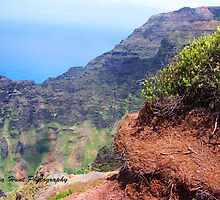 Kauai Hawaii Napali Coast Line Trail  by LenaHunt