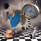 Alice in wonderland by sunshine0