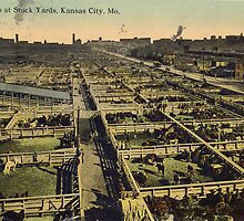 1912 Cattle Pens at Stock Yards, Kansas City, Missouri, Antique Postcard by Steve Sutton