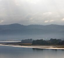 Morning  - Tamar River, Tasmania by Ruth Durose