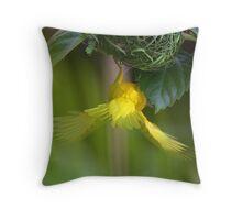Golden Palm Weaver 4 Throw Pillow