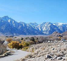 Mt. Whitney by desertdancer