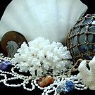 Treasures from the Sea by Marjorie Wallace