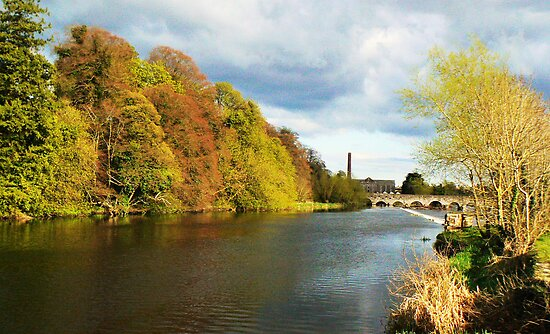 THE RIVER BOYNE Co MEATH by Finbarr Reilly