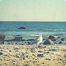 Winter Vintage Beach by Kristybee