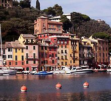 Italian Riviera  by phil decocco