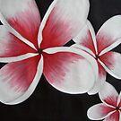 Pink Frangipani's by Sooty6