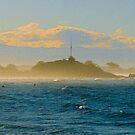 Sumner Sea-spray by John Brotheridge