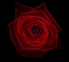 Rose by Per Mäkitalo