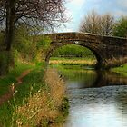 Bridge 2 - Ashby Canal by SimplyScene