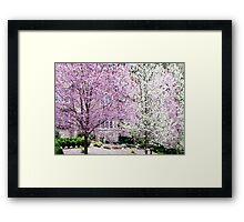 spring blizzard Framed Print