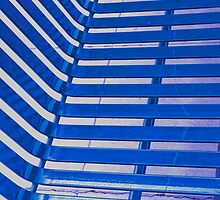 Linear Functions or Straight Curves in Blue by Buckwhite
