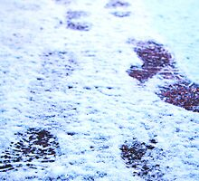 Britain's Biggest Snowfall in 60 Years - Rhydyfelin, Pontypridd, February 2009 by Victoria Morton