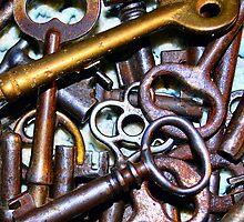 skeleton keys by Sheri Nye