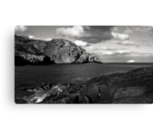Visitor from the North Canvas Print