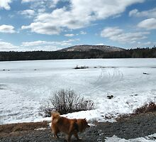 'Cindy in Maine, Eagle Lake 3' by Scott Bricker
