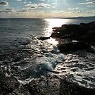 'Low Sun at Schoodic' by Scott Bricker
