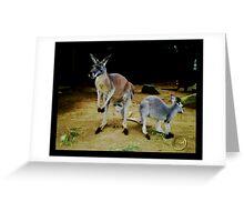 Kangaroos Greeting Card