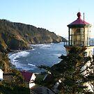 Back of Heceta Head Light House by Julie Beitzel